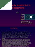 Importanta Anatomiei in Kinetoterapie