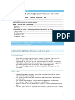 Overview of NSW Criminal Justice System and Diversion Programs