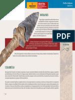 637 640 Pueblos Indigenas Charruas