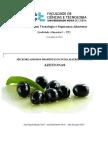 Probióticos - Azeitonas