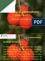 A Cultura Medronhonheiro DRAPcentro