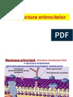 C 3structura Eritrocit Hb Degr Metab