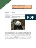 Pandas resumen
