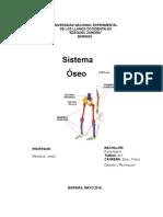 sistema oseo.docx