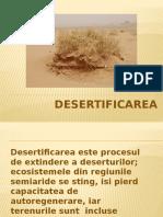 229496088-desertificarea
