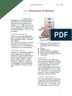 Nyckelordlista_Homeostas_1.7_Brauns.pdf
