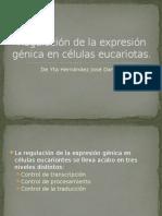 Regulación de La Expresión Génica en Células Eucariotas