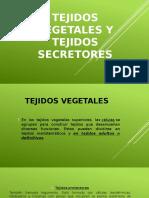 Tejidos Vegetales y Tejidos Secretores