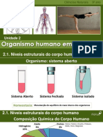 CN9 Niveis Estruturais Corpo Humano