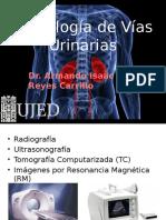 Urologa Imagenologadeviasurinarias 130223192734 Phpapp02