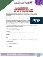 Seminario Lesiones Anatomopatologias Del Alcohol Metilico (Metanol)
