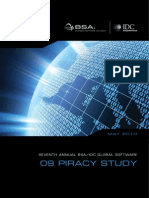 09 Piracy Study Report