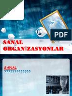 5_SANAL ORG