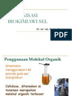 1. MolecularBioOfThe Cell
