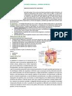 SISTEMA_EPITELIAL_2016.pdf