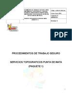 Procedimiento trabajo seguro Replanteo Topografico y Deteccion