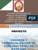 PROYECTO ENGORDE DE PORCINOS IESTPJ.pptx