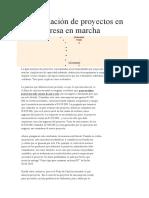 La Evaluación de Proyectos en Una Empresa en Marcha