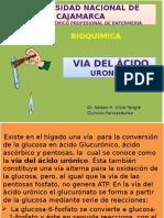 Clase Diaposit.uronico b.q.11