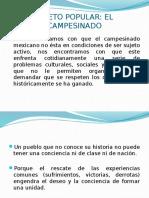 Presentacion Sociologia El Campesinado