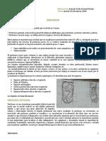 03 01 15 Cirugia de Abdomen Peritonitis