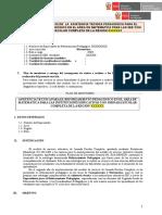 FINAL Informe Especialista