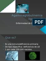 Agammaglobulinemia Ligada a X