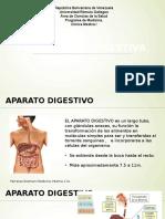 Hemorragias Digestivas alta y baja
