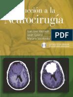 Introduccion a La Neurocirugia de Mezzadri