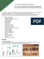 Indicadores Espaciales Gramatica Visual I