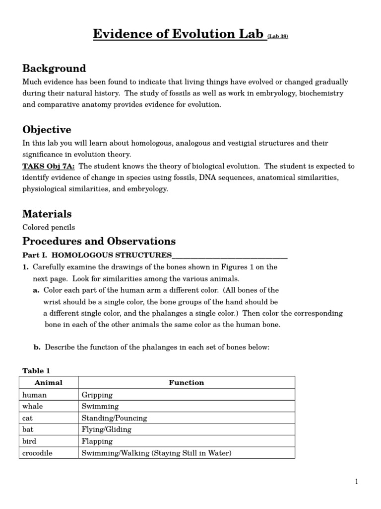 Worksheets Evidence Of Evolution Worksheet Answers evolutionary evidence lab homology biology evolution