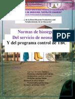 monografia-de-bioseguridad-neo-y-tbc.docx