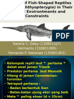 Evolution of Fish Shaped Reptiles