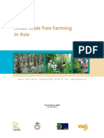 Small-Scale Tree Farming in Asia
