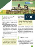 289954007 Agricultura Familiar y Seguridad Alimentaria BOLETIN N 2