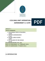 Final Report CSTR