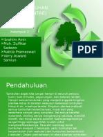 Tumbuhan (Plantae)