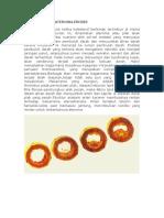 76257384-PATOFISIOLOGI-ATEROSKLEROSIS