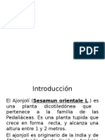 Presentacion de Investigacion. Ajonjoli,2012