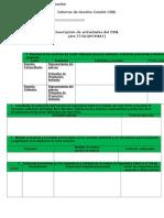 Formato Informe Comite Ssl Con Recomendaciones Inpsasel