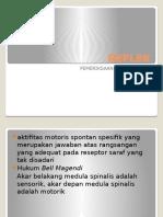 221107647-REFLEK-pptx