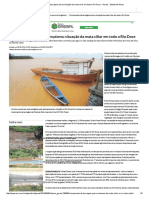 Rompimento de Barragem Piorou Situação Da Mata Ciliar Em Todo o Rio Doce - Gerais - Estado de Minas