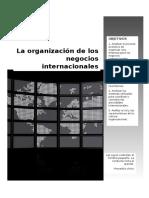 La Organización de Los Negocios Internacionales