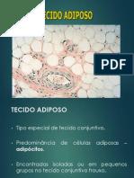 Histologia 2 Ósseo Cartilaginoso e Adiposo