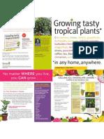 Growing Tasty Tropicals Brochure