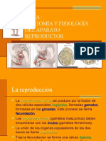 7_aparato_reproductor (1).ppt