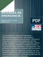 Brigadas de Emergencia Para Terminar