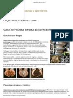 Cogumelos, Cultive Em Casa