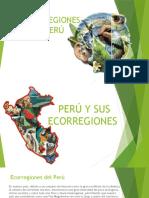 Ecorregiones Del Peru T3 1