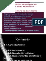 exposicion-agroindustria